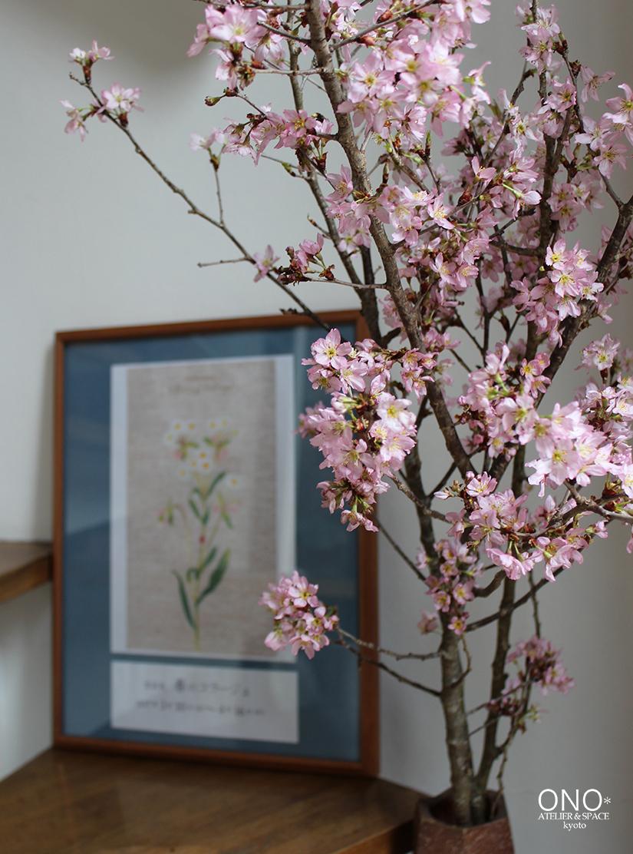 春のくつろぎ